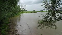 Klompenpad Hartensepad (Cor D.) Tags: klompenpad hartensepad renkum heelsum gelderland nederland
