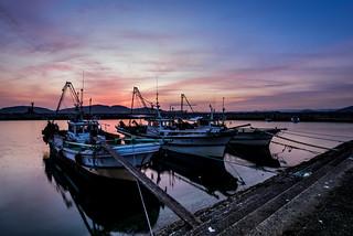 漁港にて #5ーAt a fishing port #5