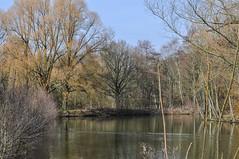 Hidden pond (RIch-ART In PIXELS) Tags: landgoedcranenweijer kerkrade thenetherlands nikon pond water tree sky forest landscape lake wood park