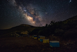 Galactic Beehives