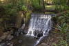 cascade (ikarusmedia) Tags: waterfall cascade water woods stairs rocks foliage plants trees state mexico valley bravo park nature river creek