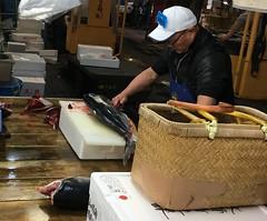 Tokyo Fish Market 7 (JP Newell) Tags: tsukiji fish seafood food