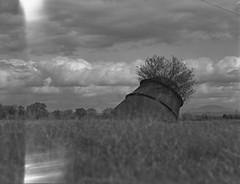 Beehive burner cottonwood ca on 4x5 film (Garrett Meyers) Tags: autograflex4x5 rbgraflex4x5 graflex graflex4x5 4x5film film filmphotographer blackandwhitefilm homedeveloped largeformat reddingphotographer