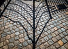 Cobbles/Chains (stephenbryan825) Tags: albertdock liverpool merseyside selects