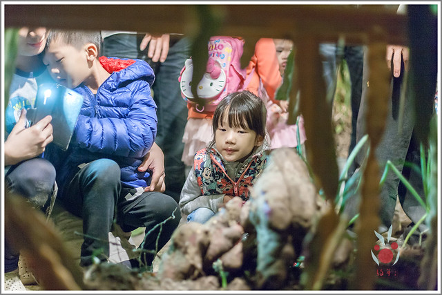 火龍果園星光野餐之找地瓜 烤地瓜 吃地瓜 (36)