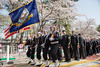 U.S. Navy Sailors participate in the Jinhae Military Parade Festival. (Official U.S. Navy Imagery) Tags: cherryblossomfestival commander williamcarlisle april2018 cnfk southkorea navy koreanpeninsula usnavy navalforceskorea tb148 cfac republicofkorea fleetactivitieschinhae changwon kr