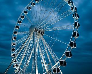 wonder wheel!