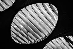 Moonlets (Jesús Simeón) Tags: aeropuertoadolfosuárezbarajas madrid terminal4 aeropuerto light architecture airport structure moonlet blackandwhite blackwhite urbanscape urban transit fujifilmxt2
