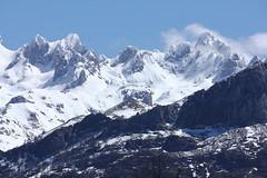 LOS PICOS DE EUROPA DESDE LA COLLADA LLOMENA (PONGA) (mflinera) Tags: asturias picos de europa ponga collada llomena montañas nieve paisaje