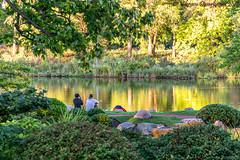 Jackson Park, Chicago, IL, USA (vdwarkadas) Tags: jacksonpark hydepark chicago il illinois water waterscape eastlagoon japanesegarden gardenofthephoenix nature sony sonya6000 sonyilce6000