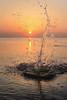 Солнце, воздух и вода (Tutchka) Tags: новыйальбом финский финскийзалив вода солнце плюх земля закат волна весна