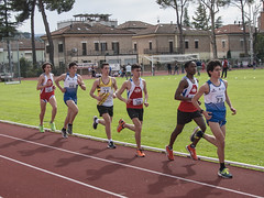 Mamadou Barkinden Diallo, Andrea Virgili, Nicholas Gironelli