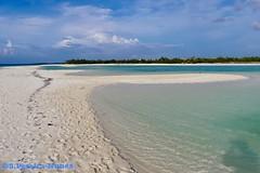 Sand Banks, Flamenco Beach, Cayo Coco, Cuba (Sebastiao P Nunes) Tags: playa beach praia oceano mar ocean seashore lakes sandbanks bancosdearena bancosdeareia caribbean caribe cuba cayococo nunes spnunes snunes spereiranunes panasonic lumixfz300k