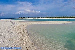 Sand Banks, Flamenco Beach, Cayo Coco, Cuba