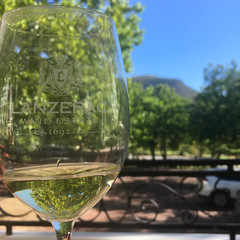 Tasting at Lanzerac wine estate (rjmiller1807) Tags: lanzerac stellenbosch winefarm wineestate vineyard capetown westerncape southafrica wine winery winetasting 2018 iphonese iphonography iphone whitewine trees green delicious january