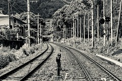 train. (framingthestreets) Tags: japan kyoto forest landscape nature trees house train rays river steel