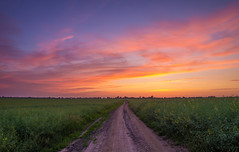 Beautiful morning (Mirek Pruchnicki) Tags: morning colors clouds landscape road village farm sunrise blue hour pentax ricoh samyang14f28 poland podkarpacie