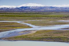 Mount Hekla (dfalkner) Tags: mounthekla iceland volcano river