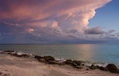 IMG_5940_honey, I got to go. (lada/photo) Tags: skyandsea gulfofmexico sunsetclouds ladaphoto seascape seashore