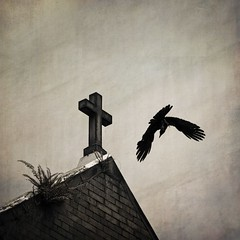 Rework of 'The Raven' (noompty) Tags: church cross crow bird brisbane city mono on1pics photoraw2018 k5 pentax carlzeiss zeiss zk makroplanart2100