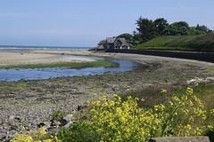 Beach (Paul McNamara) Tags: beach house rivernanny laytown trees plants meath ireland