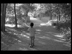 2018_05_16_FD55_GP3_Forest Park (nickthepluto) Tags: film fd55mmf12 shanghaigp3 bw d76