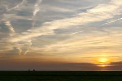 (Don Bello Photography) Tags: himmel himmelsbilder himmelszeichnungen abendstimmung abendhimmel acdsee sky clouds wolken salzwiesen dünenhof panasonicfz1000 lumixfz1000 reinhardbellmann donbellophotography