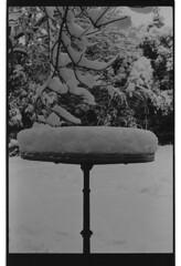 P59-2018-013 (lianefinch) Tags: argentique argentic analogique analog blackandwhite blackwhite bw noirblanc noiretblanc nb monochrome neige snow arbre tree jardin garden outdoor extérieur table