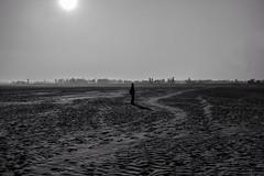 Void (Shahrear94) Tags: minimalistic bnw canon 70d black monochrome white figure shadow sunbeam sand desert 18mm bangladesh flicker light mist forest wide contrast void conceptual art landscape blackandwhite exposed dry