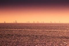 Sailing away - Tel-Aviv beach - Follow me on Instagram:  @lior_leibler22 (Lior. L) Tags: sailingawaytelavivbeach sailing away telaviv beach sailboats telavivbeach israel sea sail sailboat sky