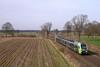 P1500706 (Lumixfan68) Tags: eisenbahn züge triebzüge baureihe et nordbahn nahsh stadler flirt 3 430