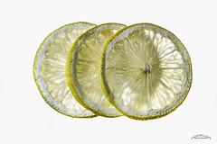 Avec lightbox (mariechristinearbeloa64) Tags: citron lightbox éclairage rondelles