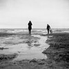 Walk on the Beach (azhukau) Tags: blackandwhite beach people nature outdoors water coastline sand men wave watersedge landscape women conceptsandideas walking monochrome dog analog film filmphotography tlr lakeontario canada ilford delta3200 anscoautomaticreflexf35 vintage