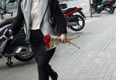 Diada de Sant Jordi, Dia de la Rosa, Dia del Llibre. (heraldeixample) Tags: heraldeixample bcn barcelona catalunya catalonia cataluña catalogne catalogna espanya spain españa rosa rose 粉红色 pink สีชมพู roserar rosaleda roseraie rosarium roseiral llibres books libros bøger livros bücher 图书 liburuak 図書 livres libbra βιβλία love amor amour amore flors flowers flores fleurs blumen blodau פרחים fiori フラワーズ blomster цветы maua 花卉 lilas albertdelahoz