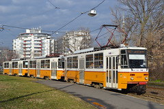 BKV Zrt 4098 (Will Swain) Tags: angyalföld kocsiszín budapest 6th january 2018 tram trams light rail railway rails transport travel europe hungary east eastern county country central capital city centre bkv zrt 4098
