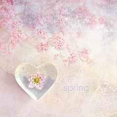 S P R I N G (Jacky Parker Flower Photography) Tags: spring springblossom flowers pinkflowers hellebore lentenrose heartshapedbowl floatingflower creativeflatlay stilllife squareorientation selectivefocus focusonforeground beautyinnature freshness flowerconcepts flowerphotography textured lace