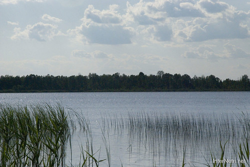 Шацький Національний Природний Парк Озеро Луки Перемут InterNetri  Ukraine 06