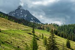 Weissenhofalm (rbrands) Tags: wanderung kleinarl salzburg österreich at