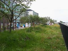 20180525-022 Rotterdam Erasmus MC (SeimenBurum) Tags: rotterdam netherlands erasmus erasmusmc hospital ziekenhuis architecture architectuur garden roofgarden daktuin tuin
