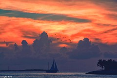 ⛵️☀️⛵️ (gusdiaz) Tags: florida key west tropical sailboat sunset amanecer atardecer sunrise canon canonphotography nature naturephotography playa mar oceano waterscape summer spring verano primavera relaxing cielo nubes agua