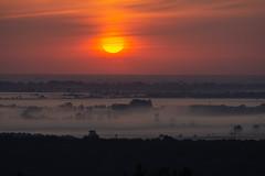 Sunrise from our window2 (bakosgabor57) Tags: sunrise fog misty morning landscape sun sky cloud trees view panorama dawn nikon70300 d7200