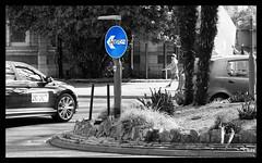 Torquay Seafront - Princess Gardens Graffiti (48) (State of Torquay) Tags: roundabout torquay tor bay the english riviera south devon westcountry torbay uk england seafront cary parade princess gardens monochrome selective colour color graffiti dirty vandalism