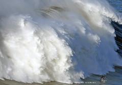 ANDREW COTTON Nominee 2018 Wipeout of the Year WSL / 3331BSG (Rafael González de Riancho (Lunada) / Rafa Rianch) Tags: surf waves surfing olas sport deportes sea mer mar nazaré vagues ondas portugal playa beach 海の沿岸をサーフィンスポーツ 自然 海 ポルトガル heʻe nalu palena moana haʻuki kai olahraga laut pantai costa coast storm temporal