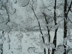 GIVRE (JOLAN2012) Tags: hiver arbres neige glace