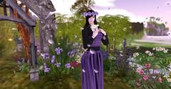 Entrance no.257 (Curiosse) Tags: long dress naif purple black innocent sweet romantic noir negro violeta vestido largo modestia romantico modesty virtue 2018