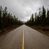 Kanada II (jpk.) Tags: 2018 canoneos5dmarkiv kanada mai reise urlaub ©janphilipkopka jasper alberta rockies highway woods wälder