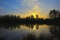 Sunset (JSB PHOTOGRAPHS) Tags: jsb3293 sunset autzenstadium pond alton altonbakerpark eugeneoregon d600 reflections trees sky clouds 24mm f28 primelens