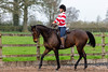 Cindy and Sophie Lesson-66.jpg (Steve Walmsley) Tags: lily jacinta horses sophie twoie lesson cindy