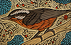 nuthatch woodcut (Lisa Brawn) Tags: art alberta artist birds brawn bird birdsinart calgary carving canadian canada canadiana design folkart graphics illustration lisabrawn popart painting reclaimed salvaged upcycled woodcut woodblock woodcarving woodcuts wildbirds wood wildlife western