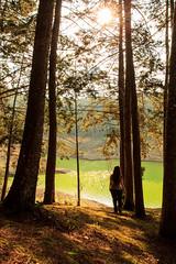 Hard Sun. (Juliana Orozco) Tags: throughherlens autorretrato retrato selfie atardecer pinos bosquepinos contraluz laguna naturaleza contrast colombia antioquia entrerríos